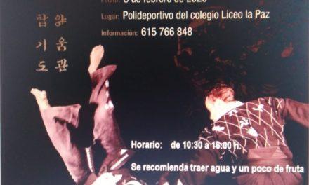 Curso de Hapkido en A Coruña